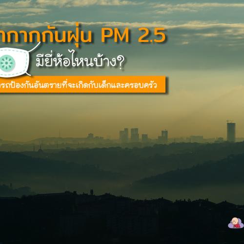 หน้ากากกันฝุ่น PM 2.5 มียี่ห้อไหนบ้าง ที่สามารถป้องกันอันตรายที่จะเกิดกับเด็กและครอบครัว
