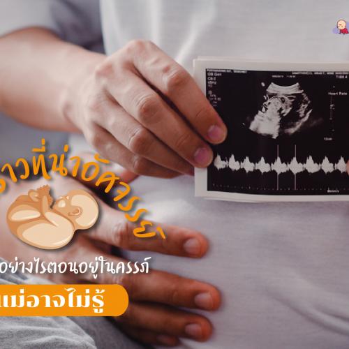 เรื่องราวที่น่าอัศจรรย์ ลูกรู้สึกอย่างไรตอนอยู่ในครรภ์ แม่อาจไม่รู้