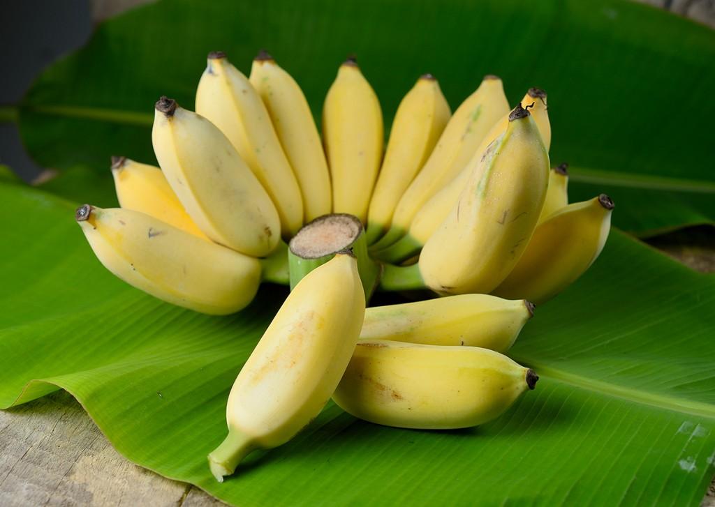 10-อาหารแก้ท้องผูก_กล้วยน้ำว้า