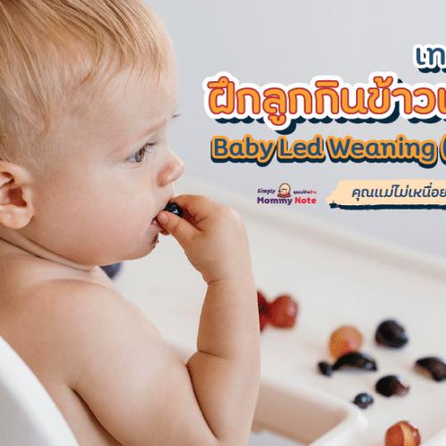 เทคนิคฝึกลูกกินข้าวเอง Baby Led Weaning (BLW) คุณแม่ไม่เหนื่อยป้อน
